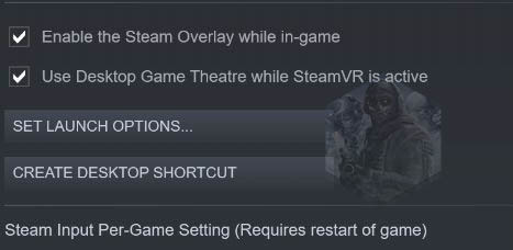 launch Steam options
