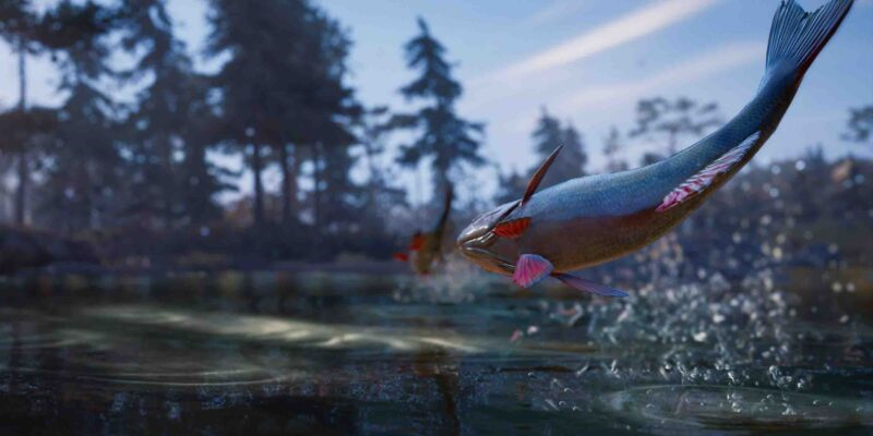 Fix AC Valhalla Fish Not Spawning or Fish Disappearing - Norway and England