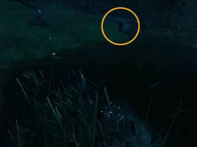 Who Is The Grim Reaper In Valheim